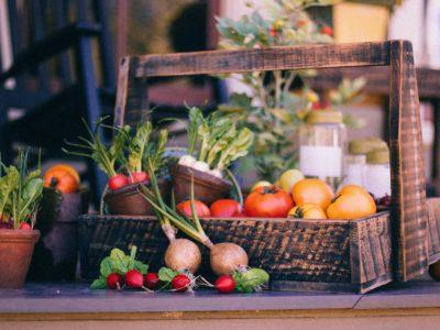Saisonkalender Juli – Obst und Gemüse im Juli