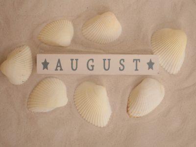Saisonkalender August – Obst und Gemüse im August