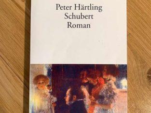 Schubert – Roman von Peter Härtling